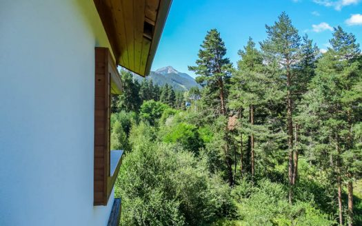 pine-tress-bansko-apartments-for-sale (17) -Furnished 1 bed on Pine Trees Residence